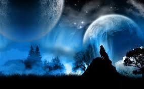 wolf fan popdotcom